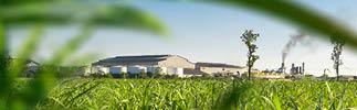 Biogas Content